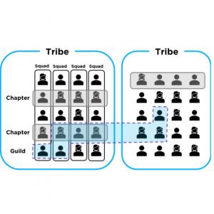 Guildas e tribos
